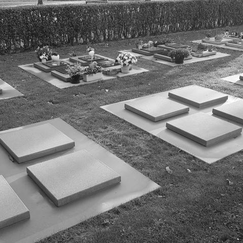Dekstenen in beton voor urnenkelders op Diestseveld in Kessel-Lo